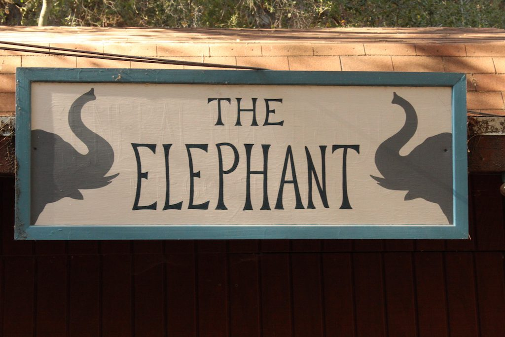 food and drink at the elephant